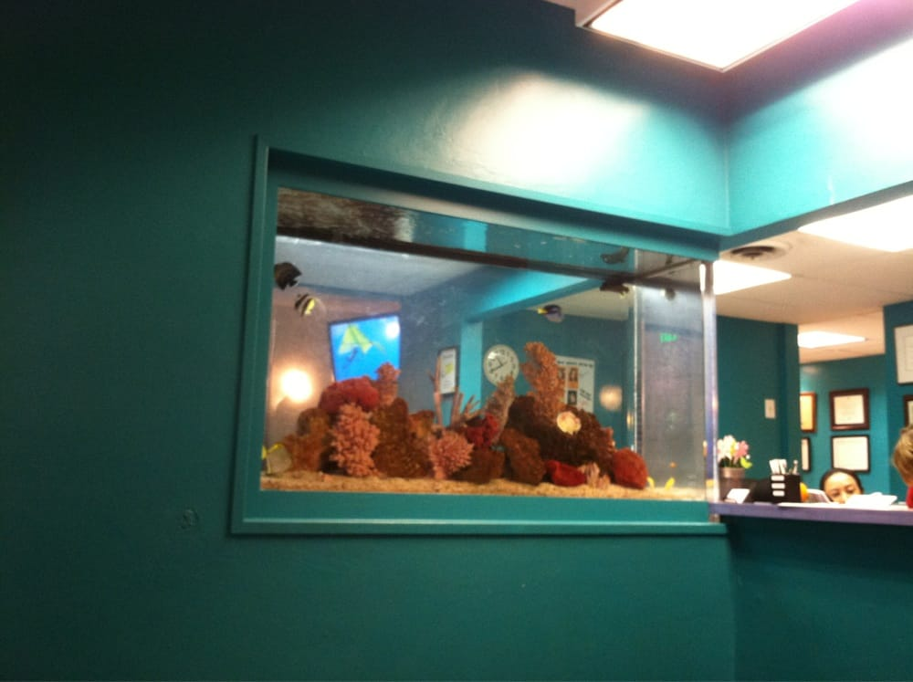 Fancy fish tank sick waiting area on other side yelp for Fancy fish tanks