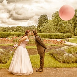 Daniel Davies Photography, Enfield Middlesex, London