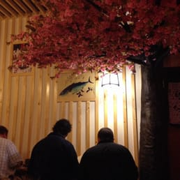 Sushi bar style seating under the cherry blossom tree.