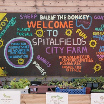 Spitalfields City Farm by Luptonn (Nigel Lupton)