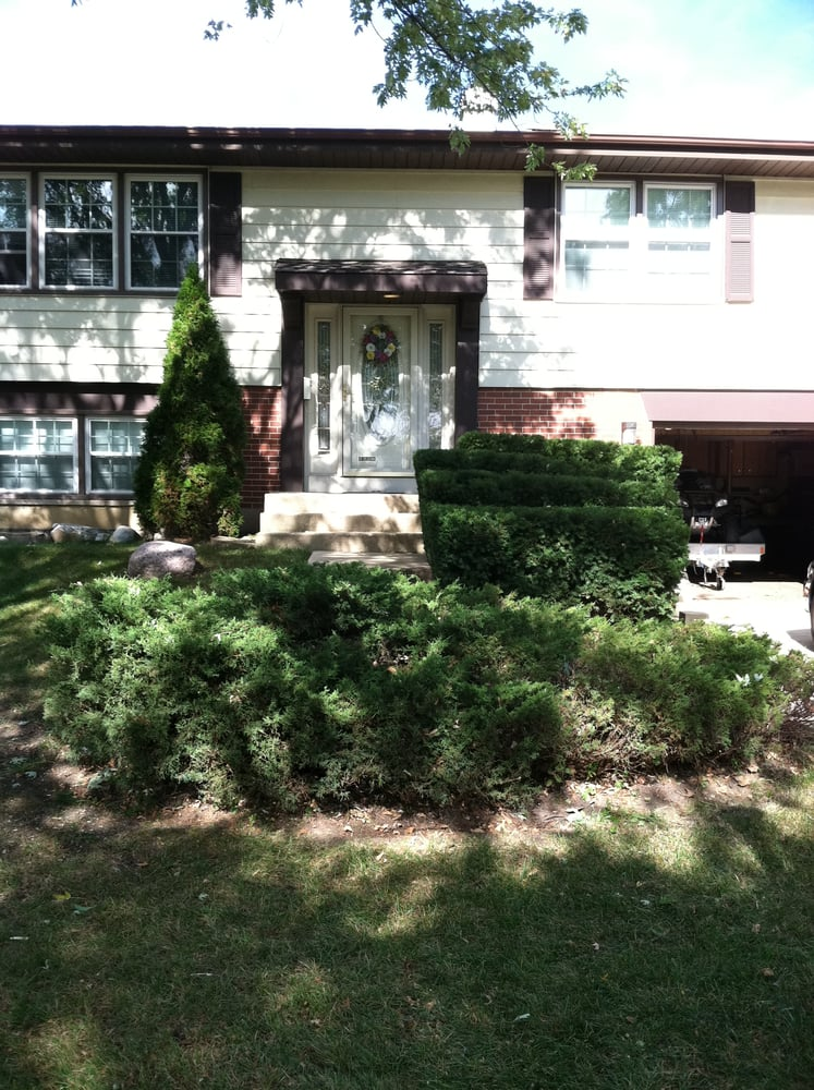 Trimmed Shrubs In Front Of House Yelp