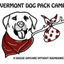Vermont Dog Pack Camp