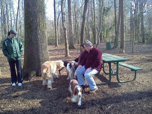 Dog Parks Near Marietta Ga