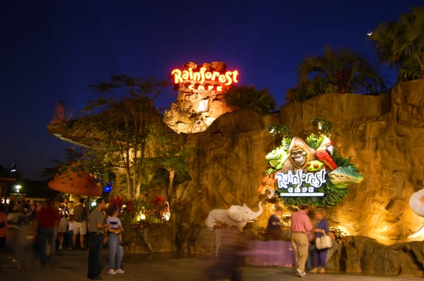 Rainforest Cafe Disney World Pictures