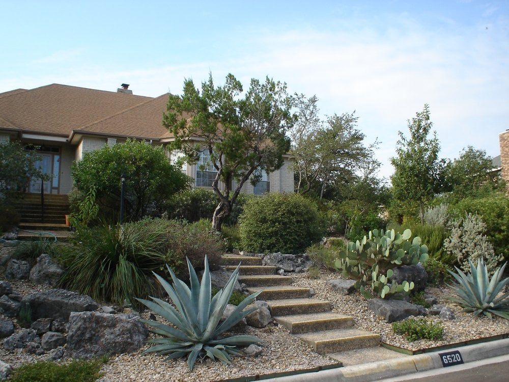 Drought tolerant planting and stone work professional for Low maintenance drought resistant landscaping