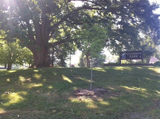 Ellenberger Park - Indianapolis, IN, Verenigde Staten   Yelp