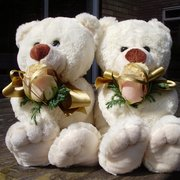 Bridesmaid Teddies
