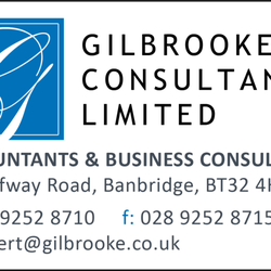 Gilbrooke Consultancy Limited, Banbridge