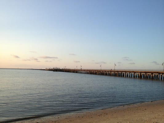 Fishing pier near me all about fish for Lewes harbor marina fishing report