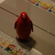 red pinguin