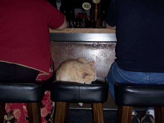 Kezar Bar & Restaurant