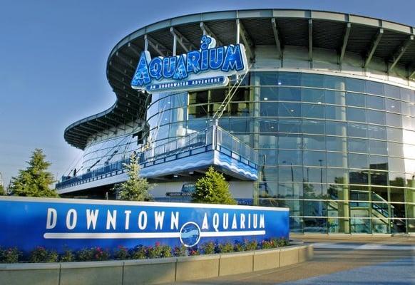 Downtown Aquarium 247 Photos Aquariums Northwest Denver Co Reviews Menu Yelp
