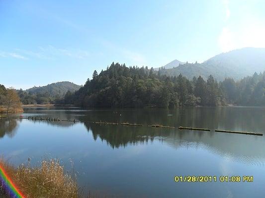 Lake lagunitas trektochten reviews yelp for Bon tempe lake fishing