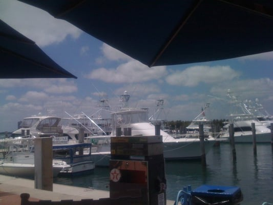 Sailfish Marina Palm Beach Menu