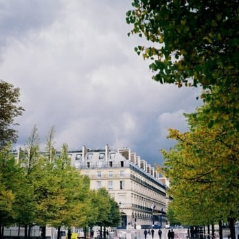 Westin from the Tuileries by Sarah Sloboda