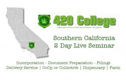 How to start a legal cannabis business - Los Angeles