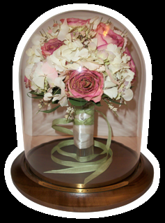 Displayed Review Beautiful Bride 70